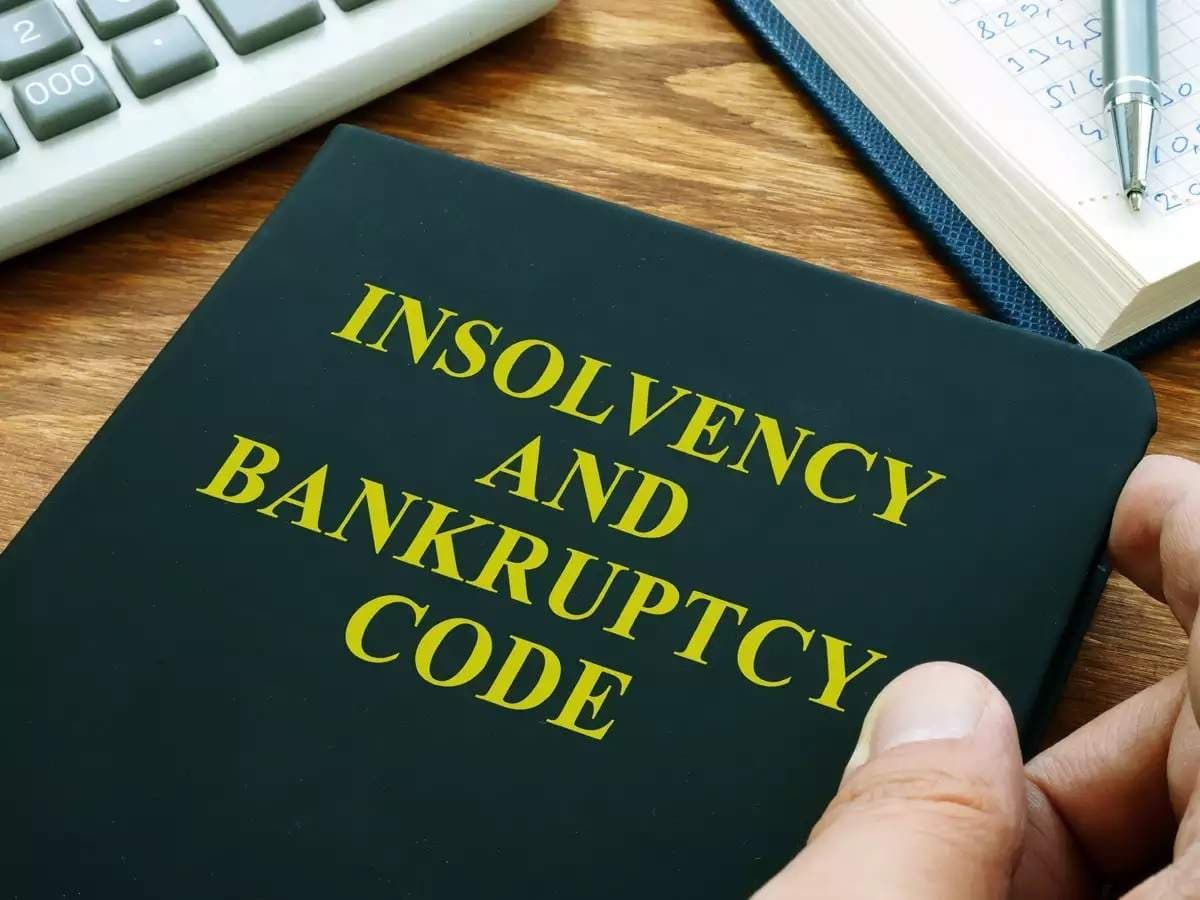 Notification of Regulations for Insolvency process for Personal Guarantors to Corporate Debtors, effective from December 1, 2019